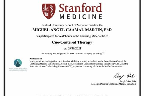 Certificado Stanford Dr Miguel Caamal psicologo merida